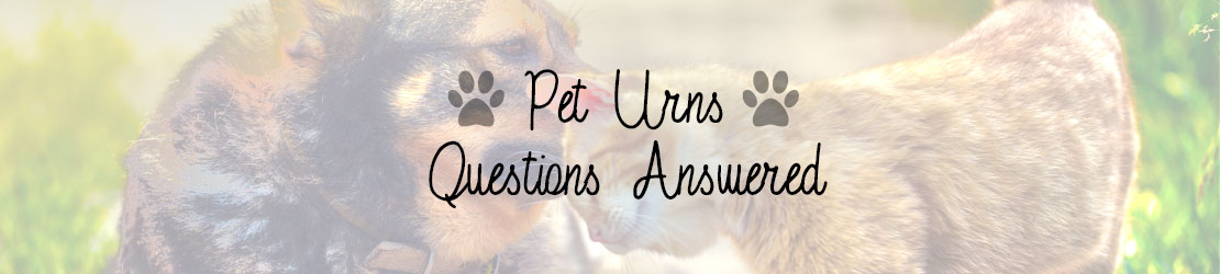 Pet Urns Questions Answered